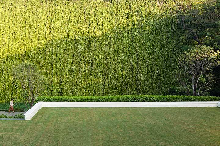 Green Wall แทนรั้วสูง ทำให้ดูเหมือนอยู่ในธรรมชาติ
