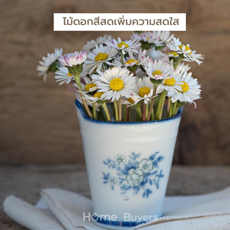 ไม้ดอกสีสดเพิ่มความสดใส